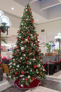 Parkway Plaza Christmas 2016-01652