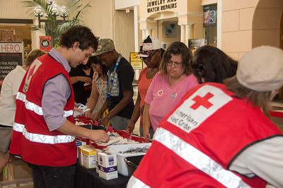 Red Cross-23832