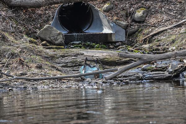 Rondout Creek Survey 2014