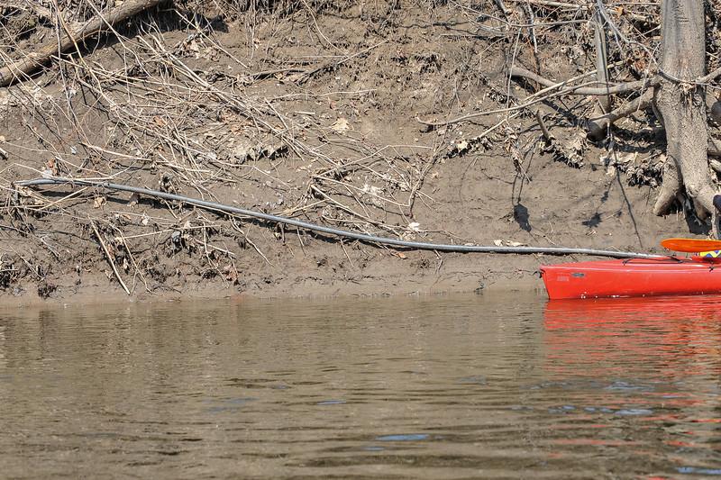 rondout kayak 2014-4-6-21