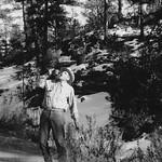 Norris (1962)
