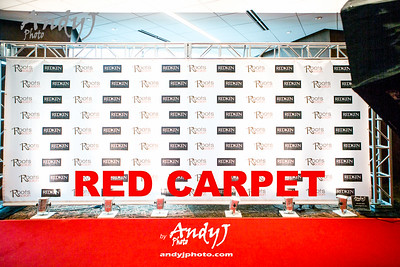 2015 Fashion Affair - Red Carpet