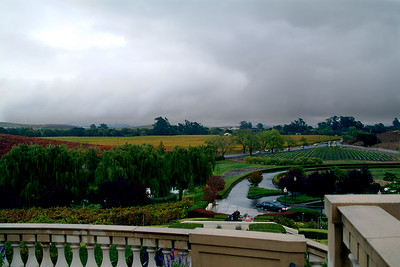 View from the pato at Domaine Carneros