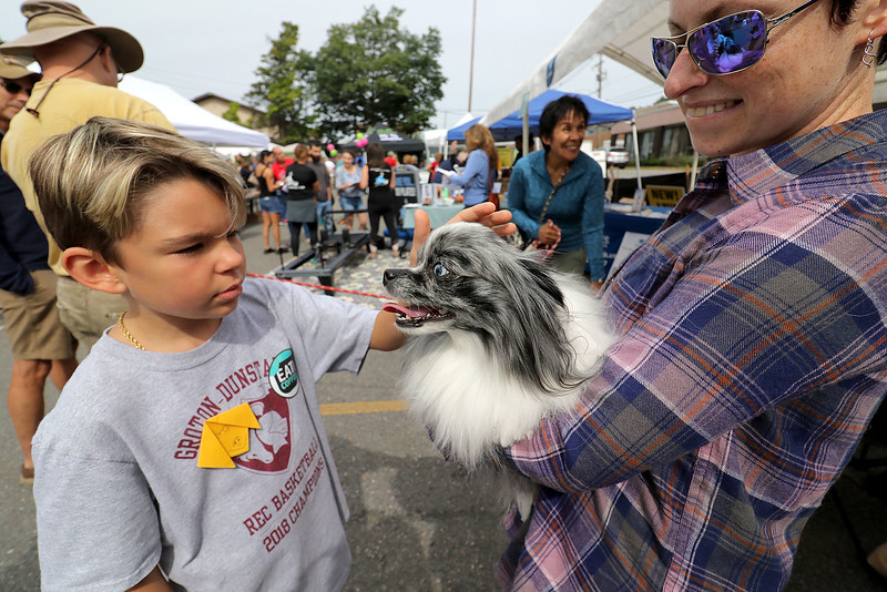 Roots Market, Kitchen, Juice Bar and Yoga held its Rootsfest 2018 on Saturday, September 8, 2018 in Leominster. Jackson Reardon, 10, of Leominster pets Luna a Pomeranian held by its owner Marina Doktor at the Therapy Pets booth during the Festival. The Therapy Pets is a group out of Fitchburg. SENTINEL & ENTERPRISE/JOHN LOVE