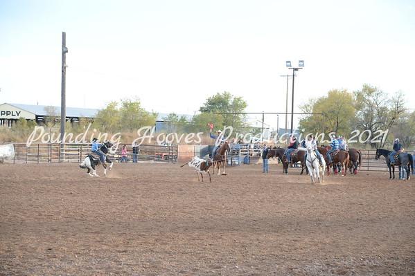 3rd Steer