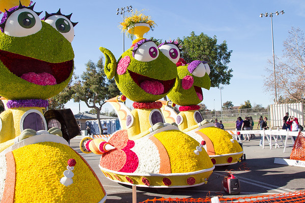 2014 Rose Parade Floats