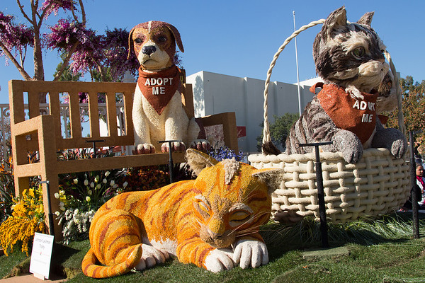 Rose Parade Floats 2013