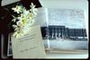 roseann yearbook