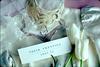 roseann-wedding-items