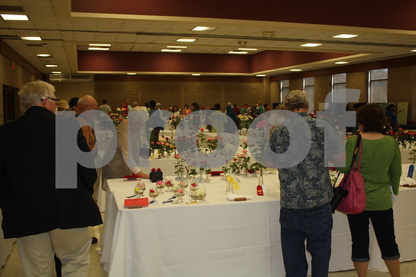 10/18/14 81st Annual Texas Rose Festival -  American Rose Growers' Rose Show by David Thomas
