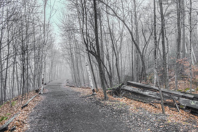Foggy Wallkill Valley Rail Trail, Rosendale, NY, December 2015