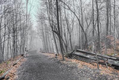 Foggy Wallkill Valley Rail Trail, Rosendale, NY, December 2015