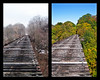 Train Trestle in Rosendale, New York, USA