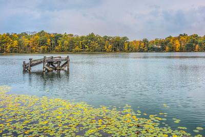 Williams Lake Rosendale, New York