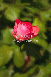 05 2023-3  Camelot Rose in Digital Painting