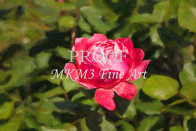 06 2023-3  Camelot Rose in Digital Painting