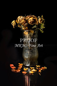 Faded Love Dead Roses Art Photographs for Canvas Prints