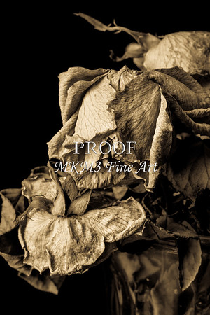 Say Good By Dead Roses Faded Love 6014.01