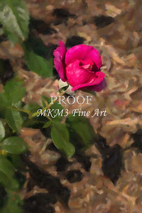 04. 2027-2 Pretty Lady Rose In Digital Painting