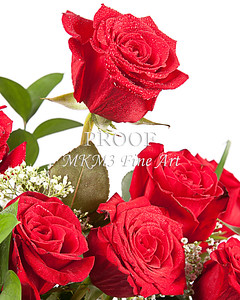 Red Rose Speaking of Love 9944.72