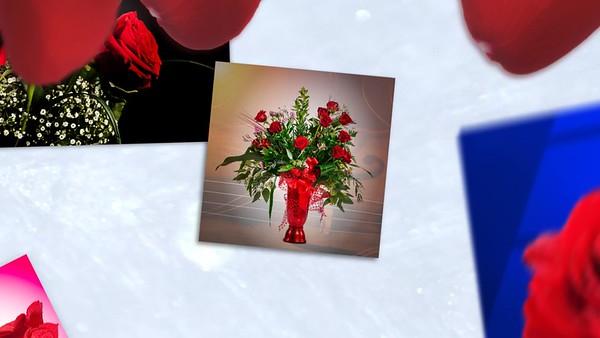 Springtime_Red_Roses_1080p
