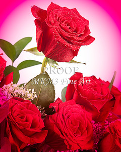 Center of Love Red Rose Wall Art 9944.72