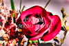 Wall Art Red Rose Painting 3186.02
