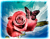 Red Rose Picture and Butterfly 3188.02