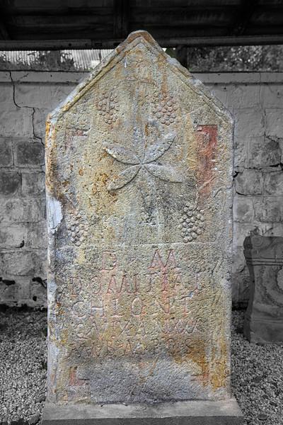 Stela funerara descoperita in anul 1765, in necropola romana de langa Taul Cornii, Rosia Montana, transportata apoi la Abrud si refolosita ca piatra de mormant in cimitirul Unitarian din aceasta localitate, readusa la Rosia Montana<br /> Inscriptia se traduce prin:<br /> Monumentul este pus pentru Dimitia Chlone care a trait 30de ani.<br /> <br /> Ar putea fi de origine greco-orientala. Pentru o atare presupunere pledeaza motivul simbolistic-ornamental. De remarcat simbolul florii vietii.