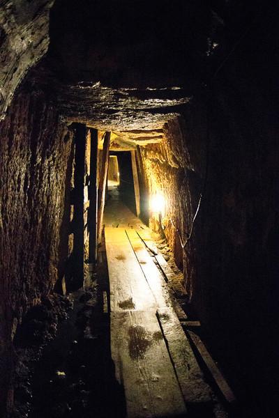 Alburnus Maior a fost cel mai important centru al exploatării aurifere din Dacia romană,  înfiinţată de împăratul Traian şi colonizată cu mineri iliri aduşi din Dalmaţia. Exploatarea aurului era practicată dinainte de venirea romanilor, după cum o atestă mai multe galerii de epocă dacică. Numele însuşi al aşezării este considerat de origine dacică. <br /> <br /> Exploatările de aur de la Alburnus Maior au fost sistematic organizate pe o arie întinsă din jurul localităţii antice. Se crede că, în perioada de maximă activitate, la minele din Alburnus Maior lucrau circa 20.000 de muncitori, care trimiteau la Roma 4.000 de kg de aur pe an. <br /> <br /> Tot din tablitele cerate aflam despre coloniştii ilirici, din seminţiile Pirustae şi Baridustae, aduşi din Dalmaţia. Ei erau constituiţi în aşezări separate şi în asociaţii de mineri (collegia aurariorum). Tăbliţele menţionează existenţa multor aşezări de tip vici şi kastella, care gravitau în jurul localităţii Alburnus Maior şi care au fost confirmate de descoperirile arheologice din teritoriul Roşiei Montane. Localitatea romană ajunsese la dimensiunile unui oraş, însă nu a trecut de status-ul juridic de pagus, cel mai probabil din cauza gradului redus de romanizare. Pe lângă majoritatea iliră, aici lucrau greci, latini sau daci angajaţi cu contract.