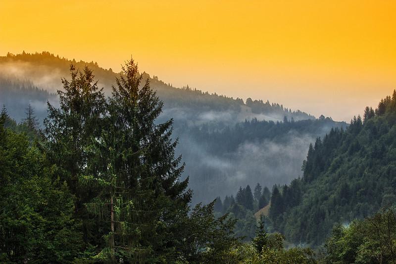 Fuioare de ceata se risipesc peste dealurile din Albac. Urmeaza vizita la Rosia Montana. <br /> <br /> Prima oprire este la  Muzeul Mineritului Aurifer  - Alburnus Maior.  Muzeul este compus din 3 sectiuni:<br /> - Galeriile miniere romane din subteranul masivului Orlea<br /> - Expozitia de utilaje miniere, in aer liber<br /> - Expozitia pavilionara cu fotografii, machete, harti si unelte, in interior<br /> <br /> Ideea amenajarii uni Muzeu al mineritului aurifer se contureaza prin 1936 dar nu se intampla nimic pana prin 1970 cand  este reluata. Lucrarile sunt finalizate in 1981, sub coordonarea si perseverenta inginerului Sintimbrean Aurel, la implinirea a 1850 de ani de atestare documentara a localitatii Rosia Montana.<br /> <br /> Muzeul apartine acum Filialei Rosiamin  Rosia Montana SA.