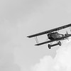 Fokker D-VII diving