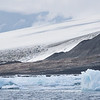 The huge Adelie Penguin colony at Cape Bird on Ross Island