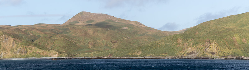 Our first view of Sandy Bay on Macquarie Island, with its colonies of Royal and King Penguins