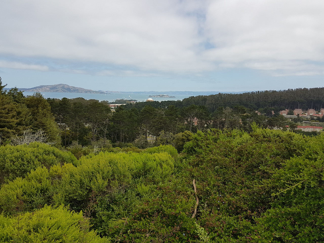Presidio Hike May 2017 115809
