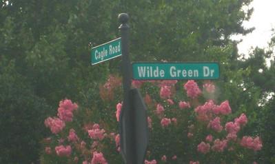 Edenwilde Homes In Roswell GA (2)