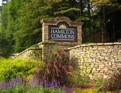 Roswell GA Neighborhood Hamilton Commons (5)