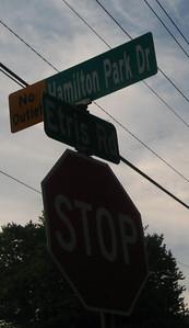 Roswell GA Neighborhood Hamilton Commons (19)