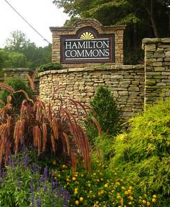 Roswell GA Neighborhood Hamilton Commons (2)