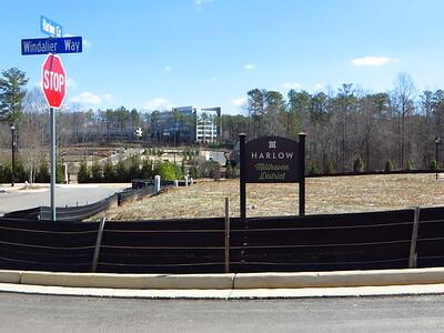 Harlow Roswell GA Townhome Neighborhood (16)