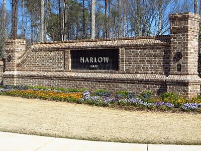 Harlow Roswell GA Townhome Neighborhood (46)