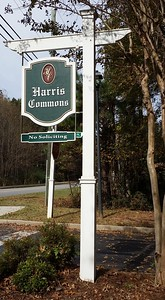 Harris Commons Townhome Roswell Neighborhood (2)