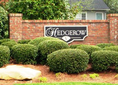 Hedgerow-Roswell Neighbrohood