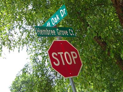 Hembree Grove Roswell GA Neighborhood (13)
