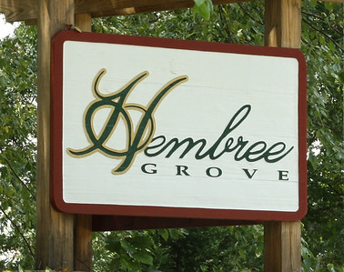 Hembree Grove-Roswell GA (5)