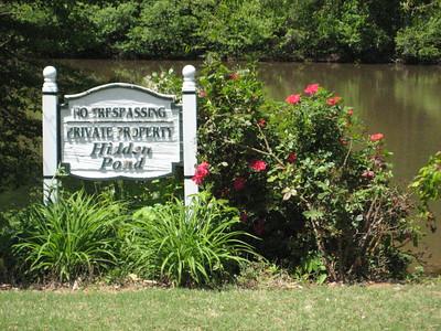 Hidden Pond Roswell GA (4)