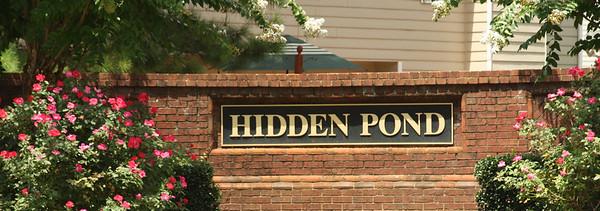 Hidden Pond-Roswell (3)