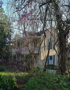 Historic Roswell Georgia (15)