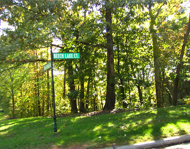 Horseshoe Bend Roswell GA Neighborhood (5)