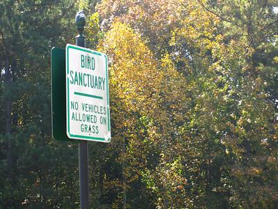 Horseshoe Bend Roswell GA Neighborhood (13)